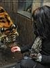 Beim sibirischen Tiger 2