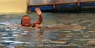 Swim with Dolphins 16