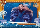 Swim with Dolphins 25