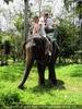 Namuang Jungle Elephant Trip 09