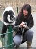 Bei den Lemuren 11
