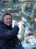 Sibirischer Tiger Winter 17