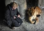 Bei den Löwen 2