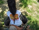 Namuang Jungle Elephant Trip 14
