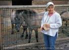 Pony Fütterung 1