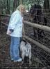 Ziegen und Pferde 3
