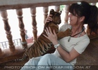 The B-Day of the Tigerman Pix 018