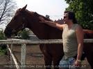 Die Pferdekoppel 1