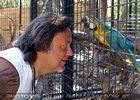 Parrots Park 22