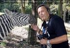 Bei den Zebras 2