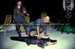 Crocodile Dundees (E.A.V.)