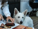 The Pitmasters Birthday Party - Pix 21
