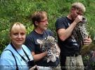Begrüßung der Schneeleoparden-Zwillinge 09