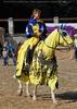 Ritterturnier zu Pferde 02