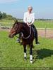 Die Pferdeshow 16 - Stuntreiter