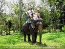 Namuang Jungle Elephant Trip 07