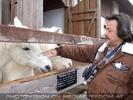 Die Tierretter von Aiderbichl 38