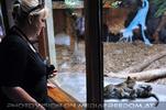 Leoparden Babys 21