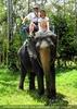 Namuang Jungle Elephant Trip 08