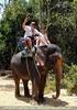 Namuang Jungle Elephant Trip 15