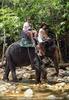 Namuang Jungle Elephant Trip 21