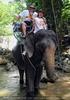 Namuang Jungle Elephant Trip 25