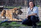 Tiger Rescue 17