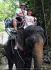 Namuang Jungle Elephant Trip 26
