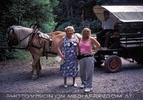 Mit der Pferdekutsche