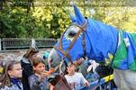 Ritterturnier zu Pferde 46