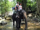Namuang Jungle Elephant Trip 27