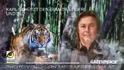 Schützt den Sumatra Tiger 2