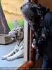 Weiße Tiger 11