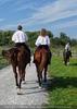 Die Pferdeshow 15 - Stuntreiter
