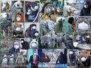 Solidarität von Tier zu Mensch ;-)!