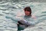 Swim with Dolphins 12