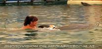 Swim with Dolphins 13