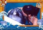 Swim with Dolphins 22