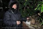 Mit der Tiergarten Katze 2