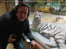 Kinderstube der weißen Tiger Drillinge 15