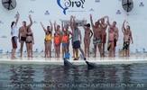 Swim with Dolphins 42