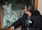 White Tiger Family 30