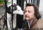Begrüßung durch einen Husky Freund