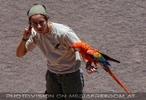 Bird Show 01