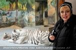 Kinderstube der weißen Tiger Drillinge 35