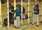 Elefanten Pflege 03