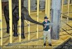 Elefanten Pflege 09