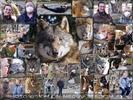 Allen Tieren so nahe ;-)!