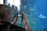 Aquarium 02