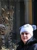 Geparden 03